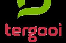 Tergooi logo