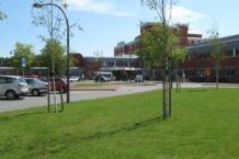 Zuiderzeeziekenhuis